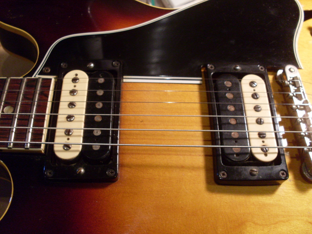 Cool to find a single reverse zebra in a 335 but two? Anybody else got one like this?? There's a 345 on Clay H's vintage guitar site with two of them so I know they are out there.